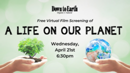 """Free Virtual Screening of """"A Life on our Planet"""" Wednesday, April 21st at 6:30pm"""