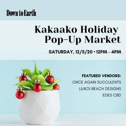 Photo: A small succulent plant with ornaments and info about the Kakaako Holiday Pop-Up Market