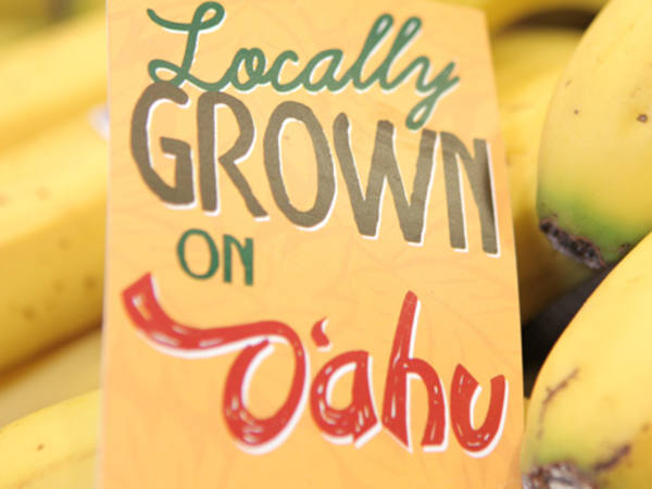 Locally Grown Bananas on Oahu