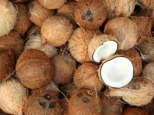 Vegan Coconut Quinoa Risotto