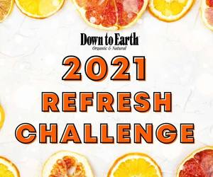 Graphic: Down to Earth 2021 Refresh Challenge