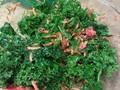 Photo: Kale Salad with Lemon Vinaigrette