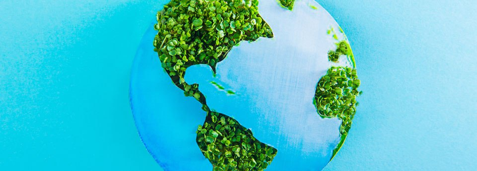 Photo Illustration: Earth with continents of fresh green sprouts