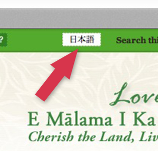 Screenshot Showing Japanese Button on the Down to Earth Home Page