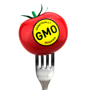 GMO: Genetically Modified