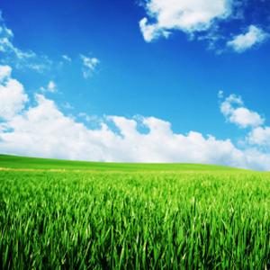 Photo: Green Fields