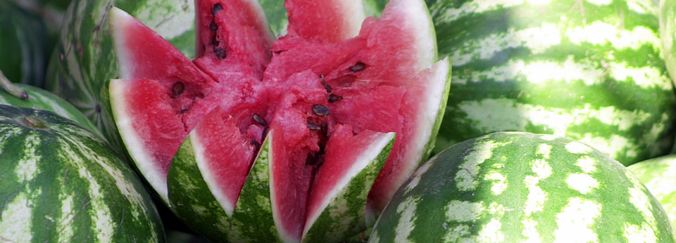 Photo: Fresh Cut Watermelon